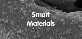 Polymeric Biomaterials